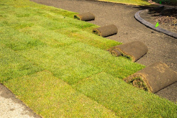 sod and hydro seed installation services spokane